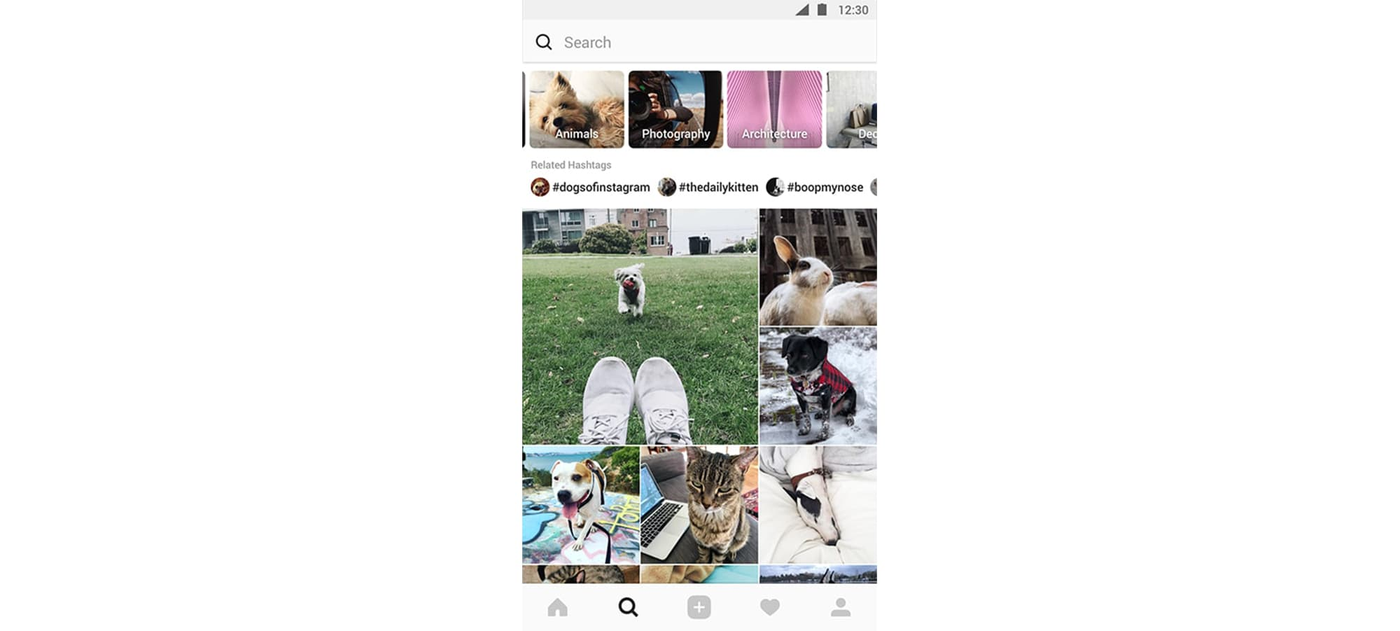 Instagram - Explore and Search Page