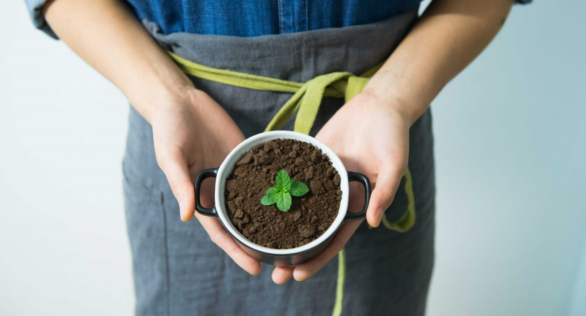 6 Innovative Idea for Going Green - STAAH